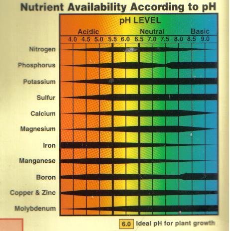 chart – Ph Chart